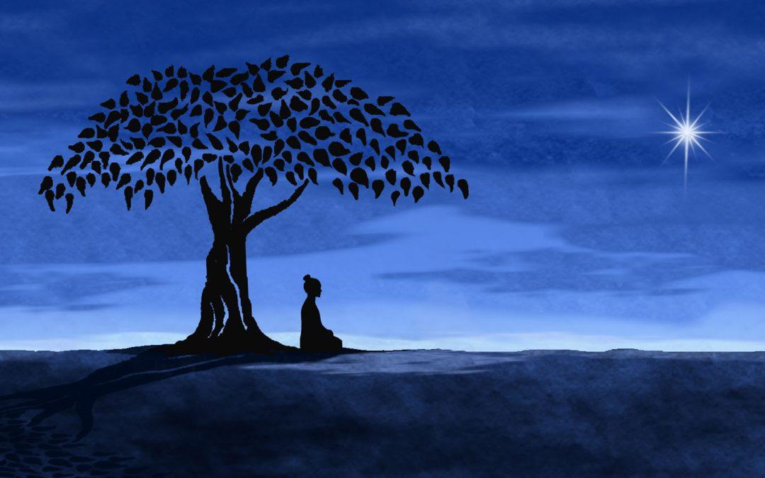 Mindfulness e Buddhismo