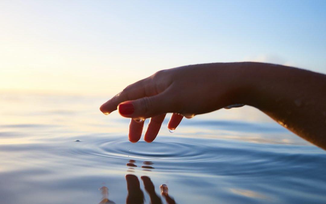 Riflessioni di Dharma sull'importanza della meditazione di gentilezza