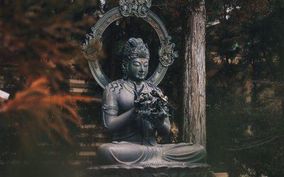 Ep. 78 Riflessioni di Dharma su come rendere la pratica viva