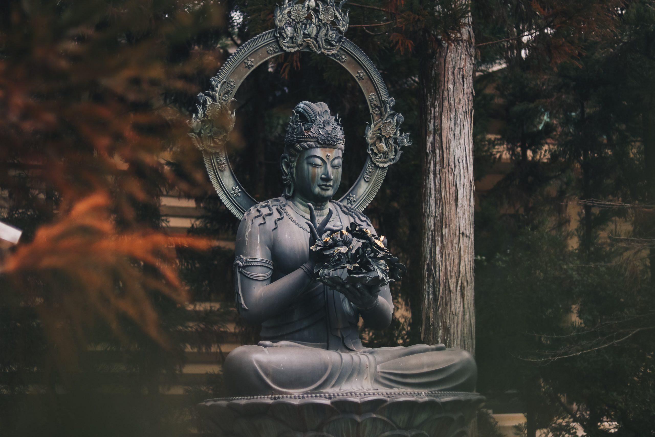 Riflessioni di Dharma su come rendere la pratica viva