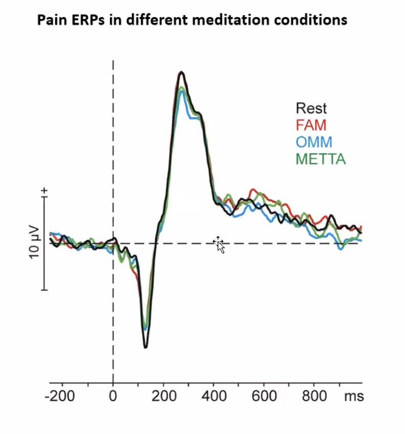 neuroscienza della meditazione percezione del dolore meditazioni