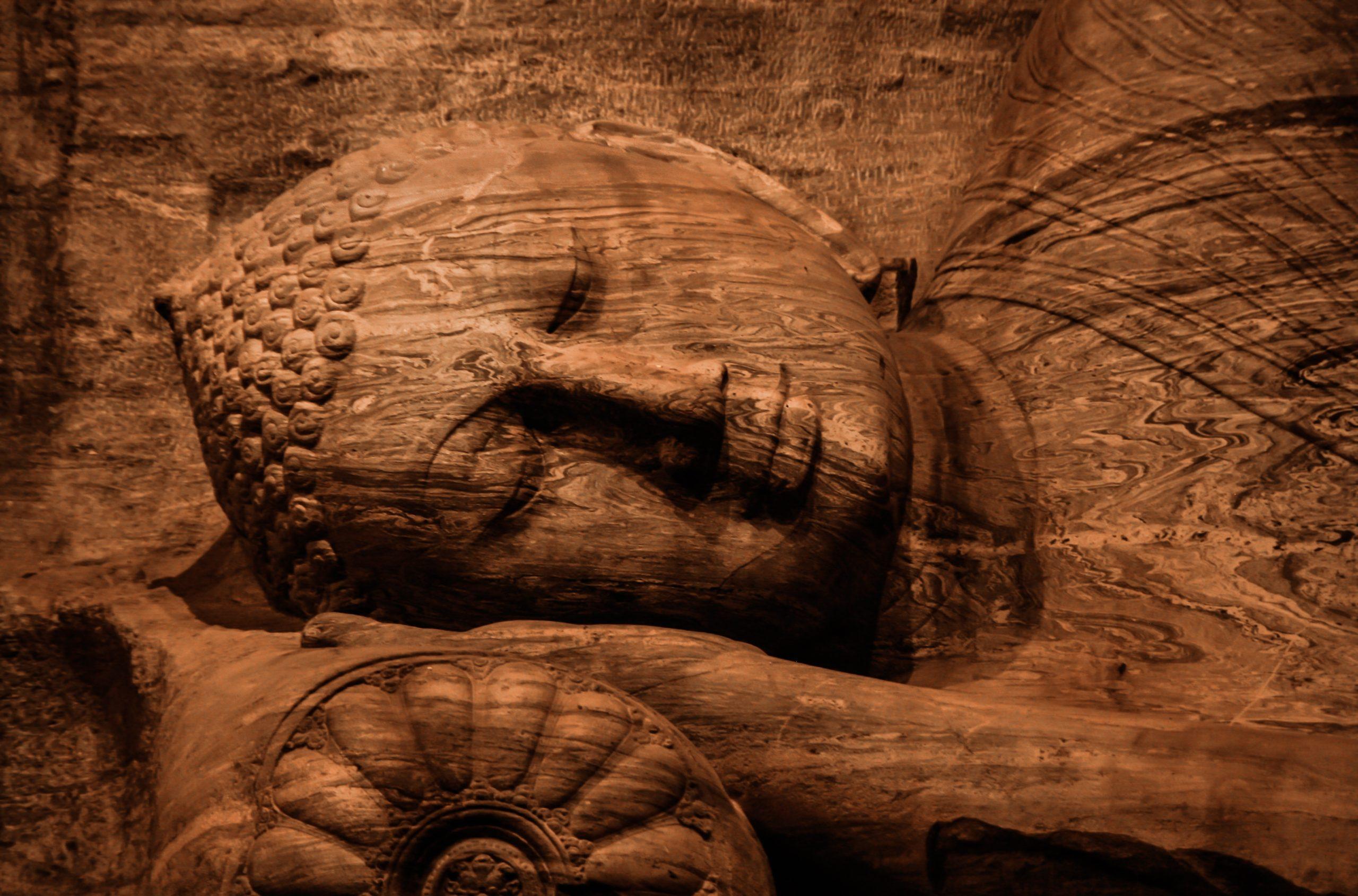 Riflessioni di Dharma sull'equanimità
