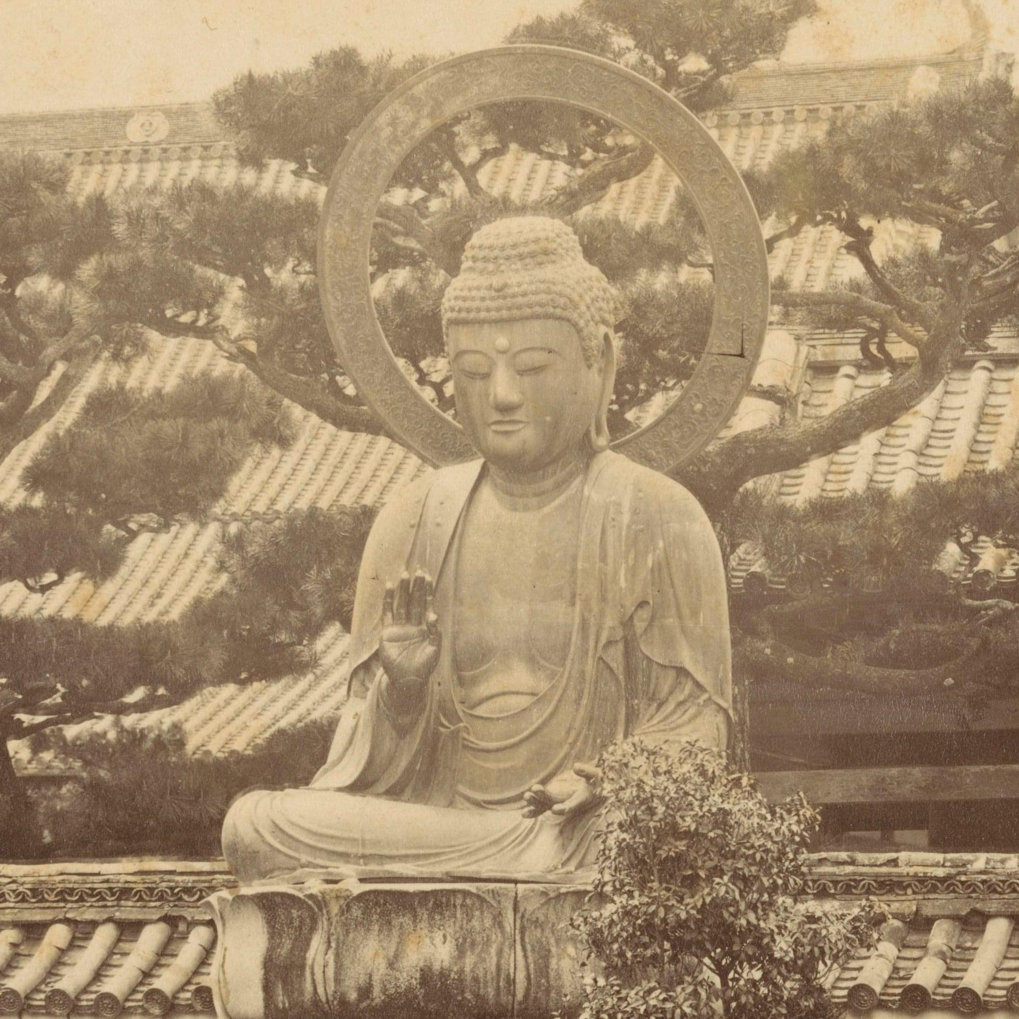 Terrapura: Meditazione, Mindfulness, Buddhismo