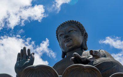 Ep. 131 Riflessioni sulla Rete del Dharma