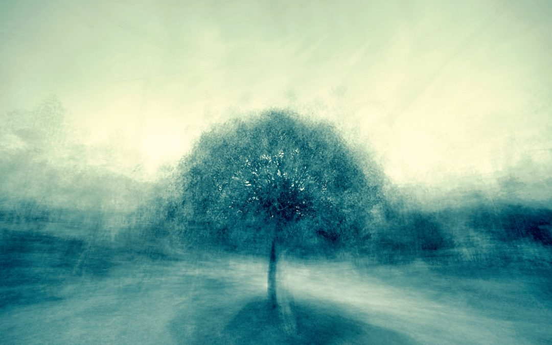 Ep. 130 Meditazione sugli stati mentali salutari