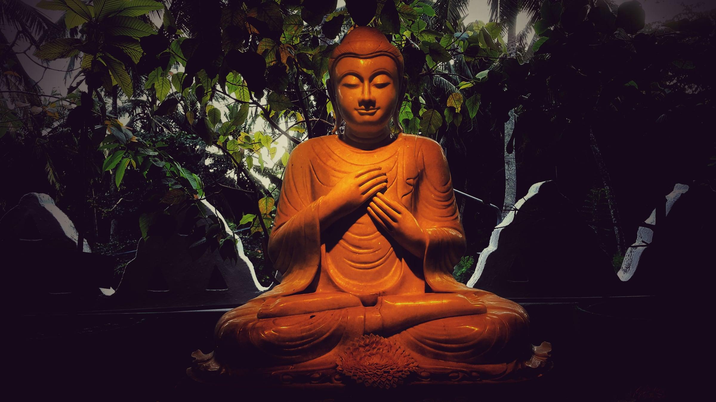Buddha, osservazione delle sensazioni